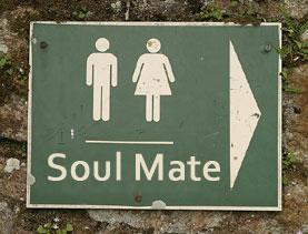 soulmatenew-copy
